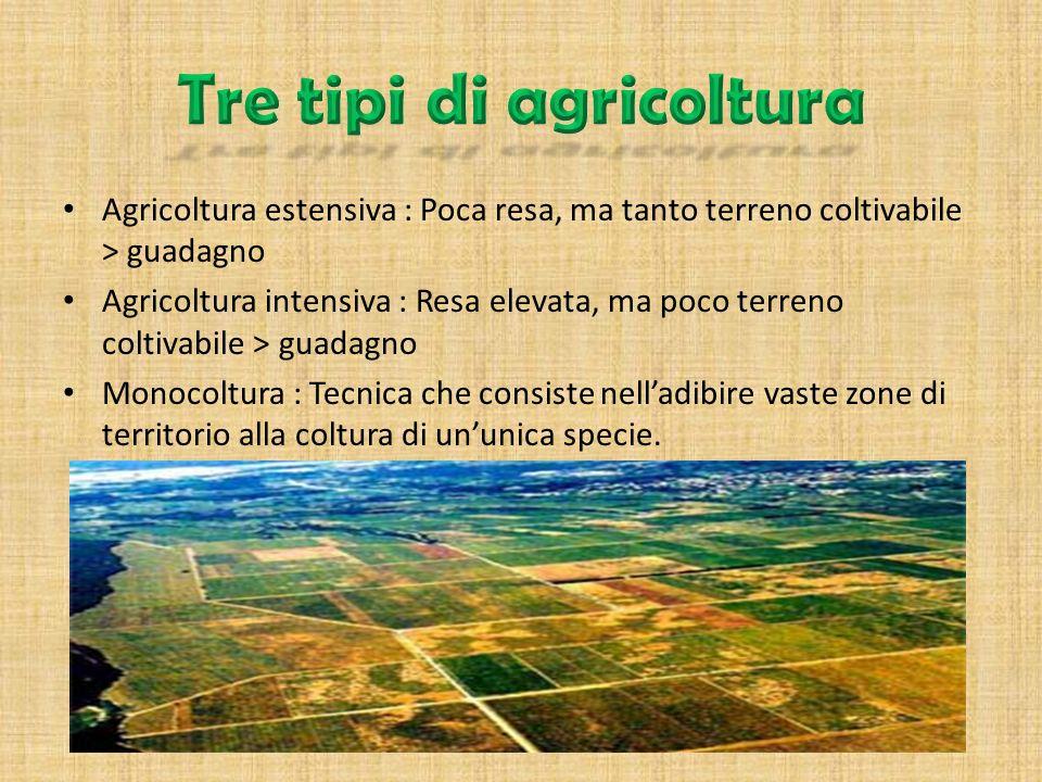 Se una volta lagricoltura era fondamentale per la sopravvivenza economica e rurale delluomo oggi sta andando man mano svanendo a causa dellarrivo del