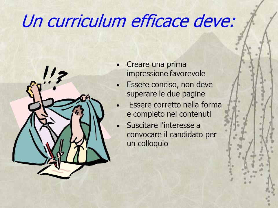 Un curriculum efficace deve: Creare una prima impressione favorevole Essere conciso, non deve superare le due pagine Essere corretto nella forma e com