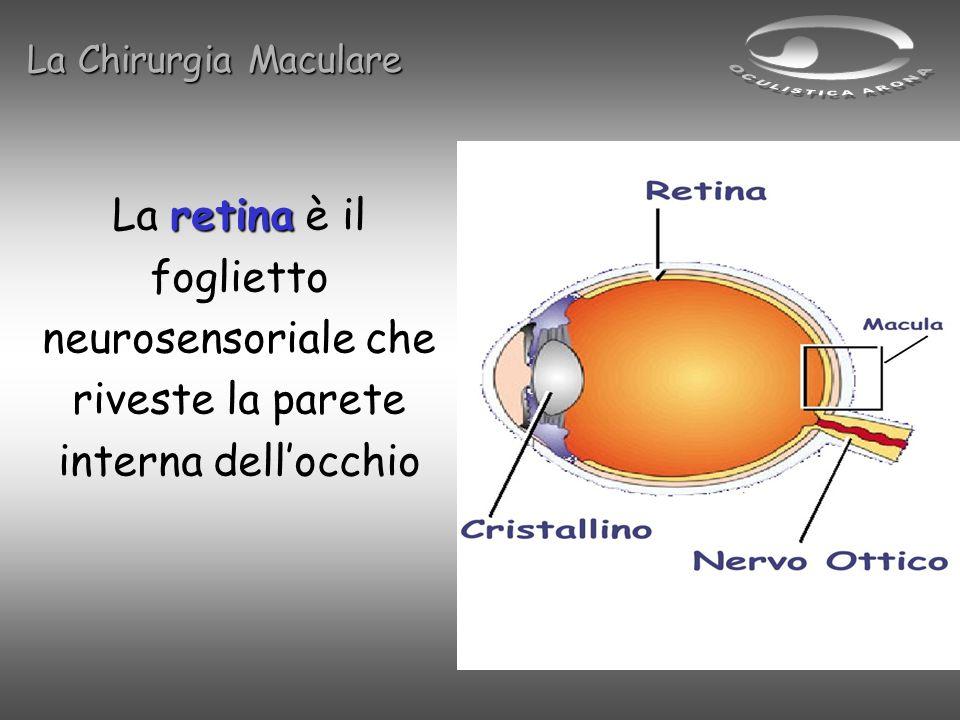 retina La retina è il foglietto neurosensoriale che riveste la parete interna dellocchio La Chirurgia Maculare