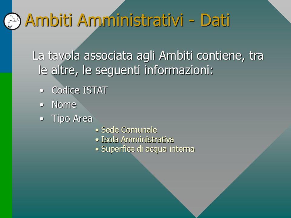 Ambiti Amministrativi - Dati La tavola associata agli Ambiti contiene, tra le altre, le seguenti informazioni: Codice ISTATCodice ISTAT NomeNome Tipo