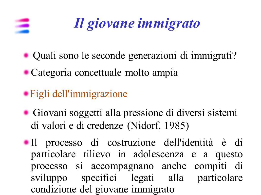 Il giovane immigrato Quali sono le seconde generazioni di immigrati? Categoria concettuale molto ampia Figli dell'immigrazione Giovani soggetti alla p