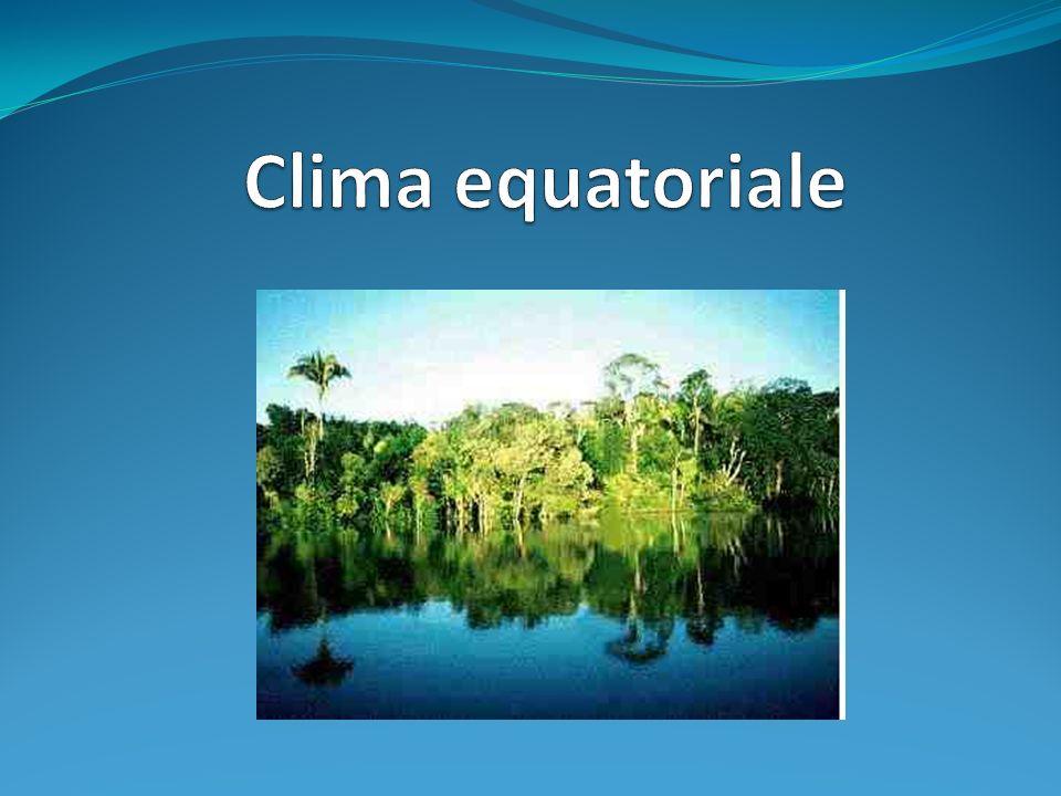 Il clima equatoriale è diffuso in Venezuela, Colombia, Haiti, Costa Rica, Bolivia, parte piccola del nord-est del brasile, Congo, Est Madagascar, Sri Lanka, Indonesia, Papua Neuguinea