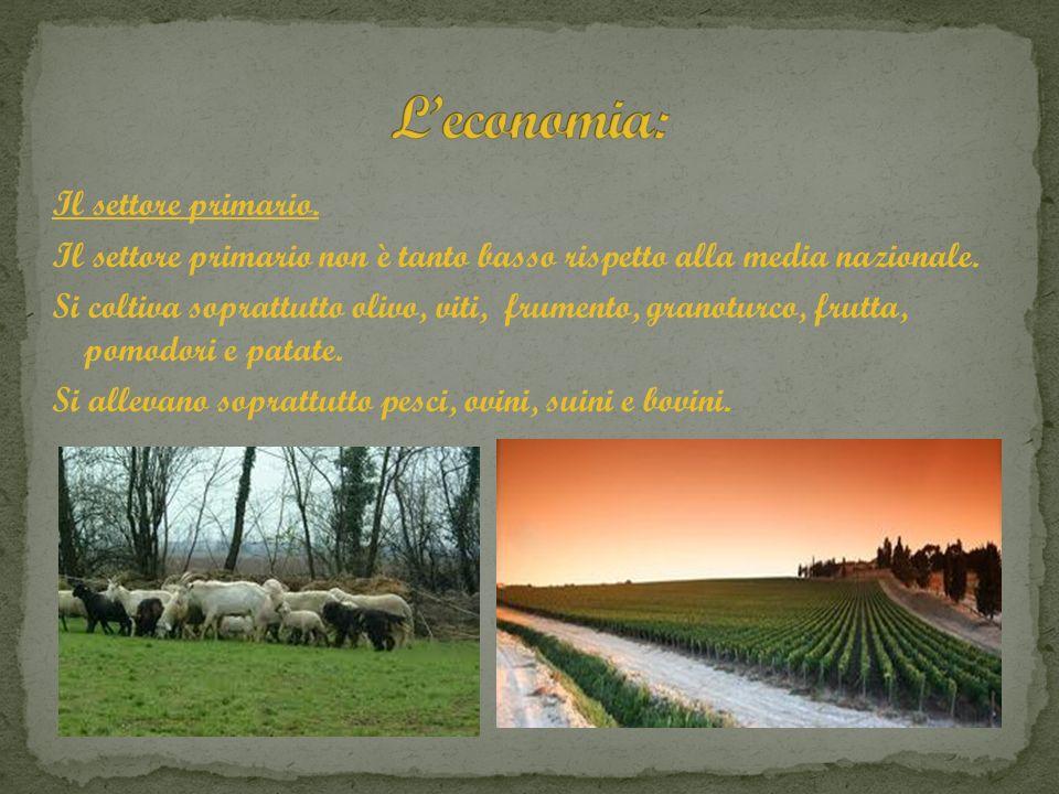 Il settore primario. Il settore primario non è tanto basso rispetto alla media nazionale. Si coltiva soprattutto olivo, viti, frumento, granoturco, fr