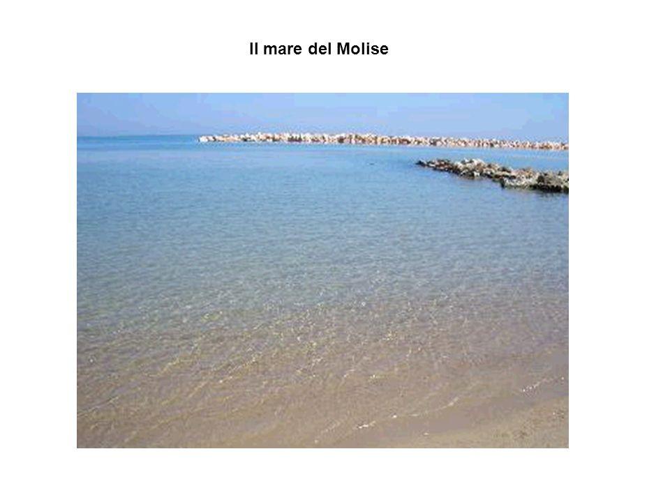 Il mare del Molise