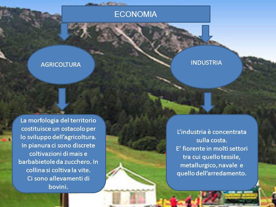 ECONOMIA AGRICOLTURA INDUSTRIA La morfologia del territorio costituisce un ostacolo per lo sviluppo dellagricoltura. In pianura ci sono discrete colti