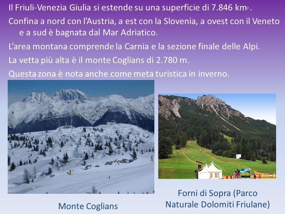Il Friuli-Venezia Giulia si estende su una superficie di 7.846 km 2. Confina a nord con lAustria, a est con la Slovenia, a ovest con il Veneto e a sud