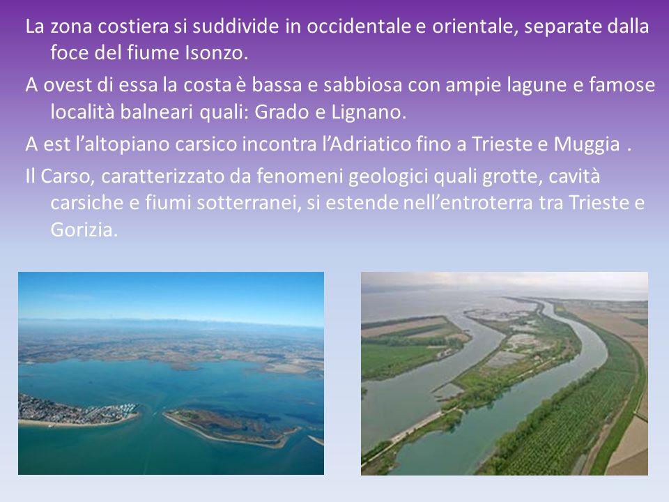La zona costiera si suddivide in occidentale e orientale, separate dalla foce del fiume Isonzo. A ovest di essa la costa è bassa e sabbiosa con ampie