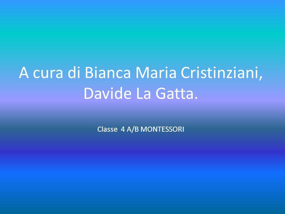 A cura di Bianca Maria Cristinziani, Davide La Gatta. Classe 4 A/B MONTESSORI