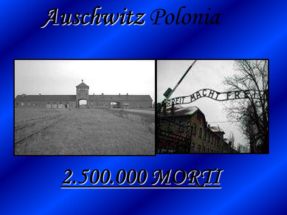 Auschwitz Auschwitz Polonia ) 2.500.000 MORTI