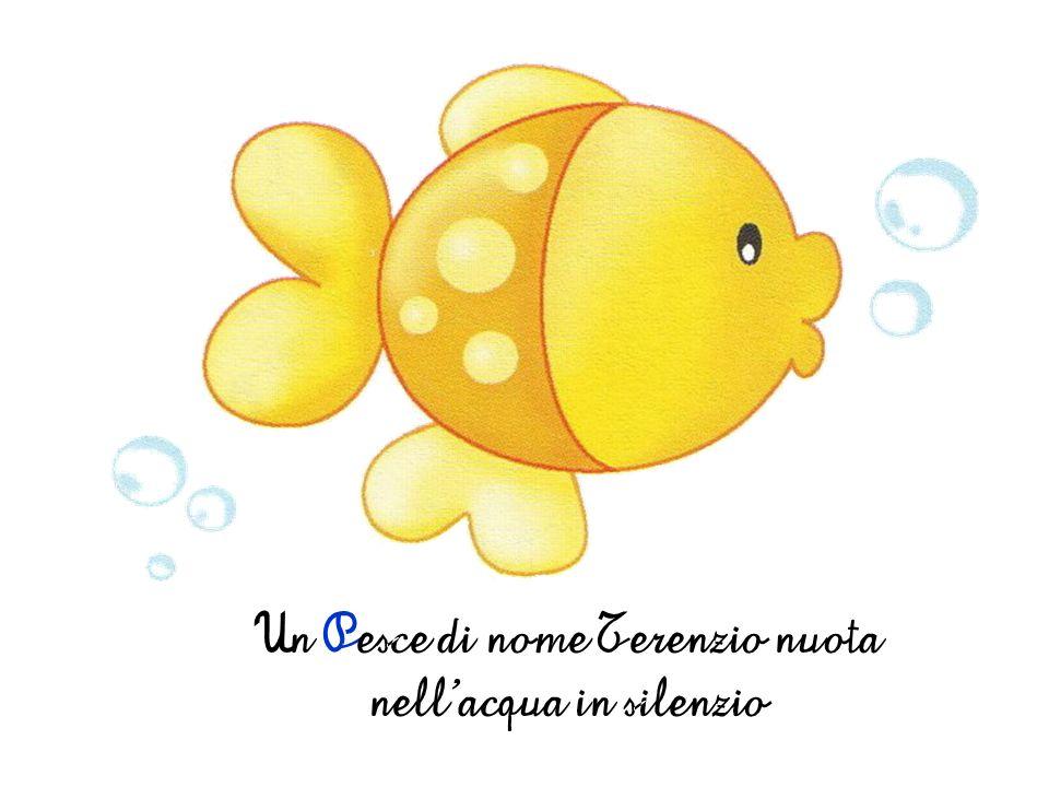 Un Pesce di nome Terenzio nuota nellacqua in silenzio