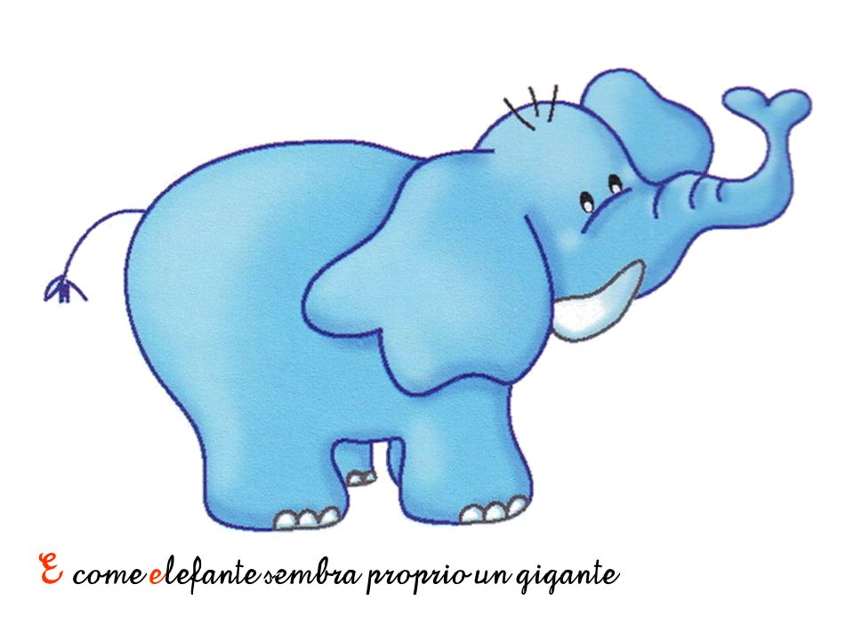 E come elefante sembra proprio un gigante