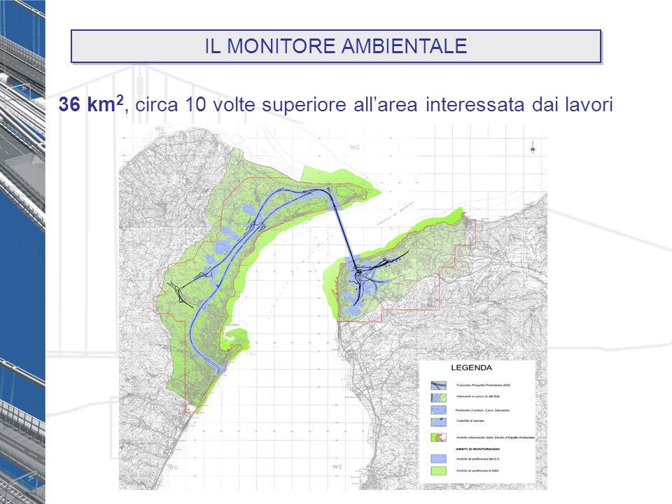 36 km 2, circa 10 volte superiore allarea interessata dai lavori IL MONITORE AMBIENTALE