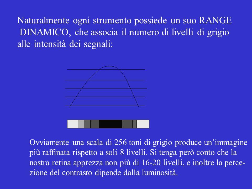 Naturalmente ogni strumento possiede un suo RANGE DINAMICO, che associa il numero di livelli di grigio alle intensità dei segnali: Ovviamente una scal