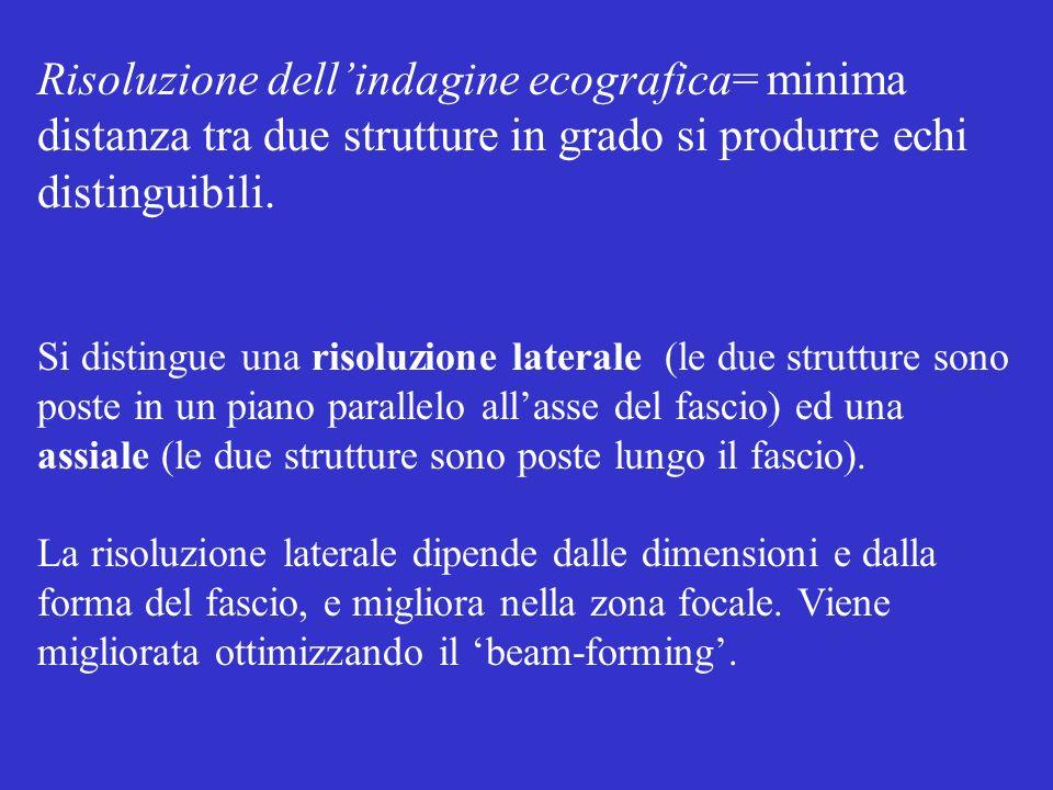 Risoluzione dellindagine ecografica= minima distanza tra due strutture in grado si produrre echi distinguibili. Si distingue una risoluzione laterale