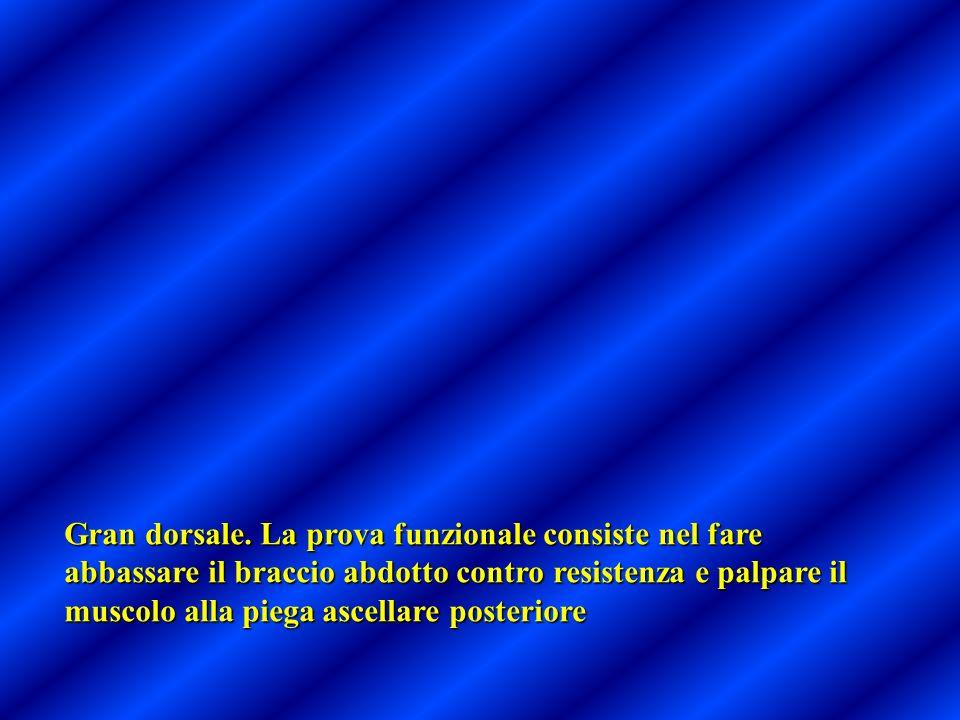 Gran dorsale. La prova funzionale consiste nel fare abbassare il braccio abdotto contro resistenza e palpare il muscolo alla piega ascellare posterior