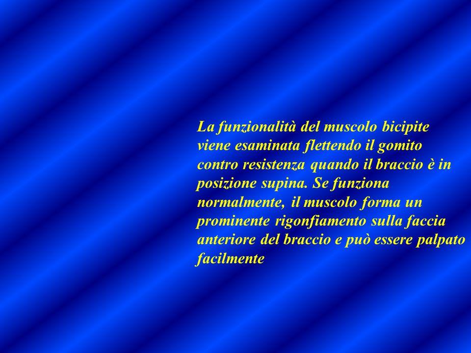 La funzionalità del muscolo bicipite viene esaminata flettendo il gomito contro resistenza quando il braccio è in posizione supina. Se funziona normal