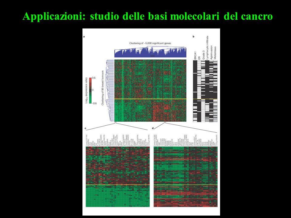 Applicazioni: studio delle basi molecolari del cancro