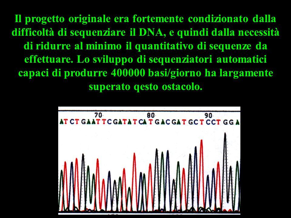 Il progetto originale era fortemente condizionato dalla difficoltà di sequenziare il DNA, e quindi dalla necessità di ridurre al minimo il quantitativ