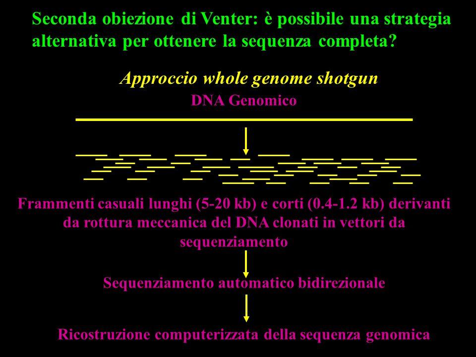 Seconda obiezione di Venter: è possibile una strategia alternativa per ottenere la sequenza completa? DNA Genomico Frammenti casuali lunghi (5-20 kb)