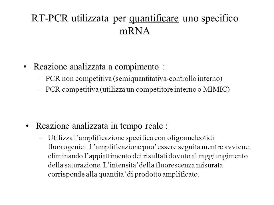 RT-PCR utilizzata per quantificare uno specifico mRNA Reazione analizzata a compimento : –PCR non competitiva (semiquantitativa-controllo interno) –PC