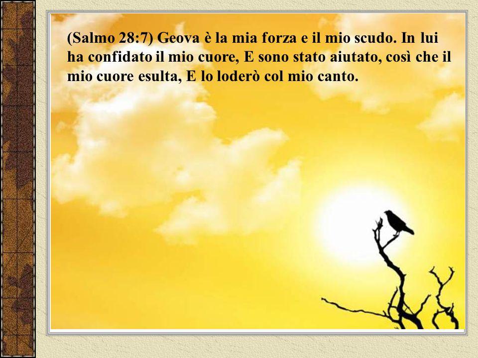 (Salmo 34:15) Gli occhi di Geova sono verso i giusti, E i suoi orecchi sono verso la loro invocazione di soccorso.