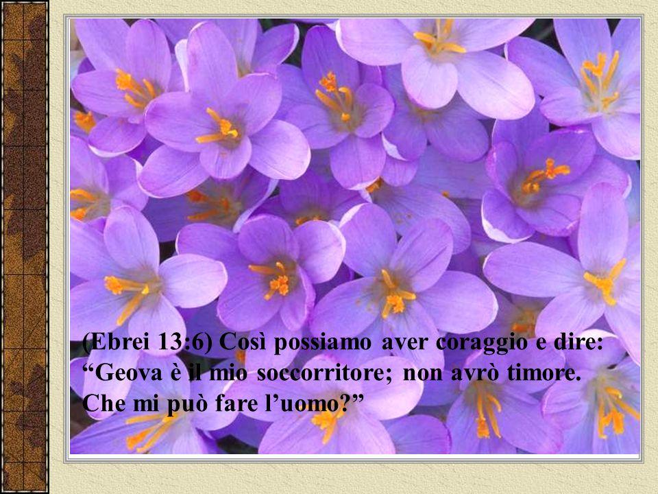 (2 Timoteo 1:7) Poiché Dio non ci diede uno spirito di codardia, ma di potenza e di amore e di sanità di mente.