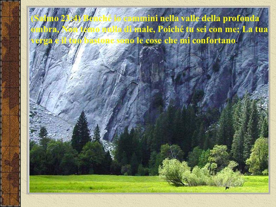 (Ebrei 13:6) Così possiamo aver coraggio e dire: Geova è il mio soccorritore; non avrò timore.