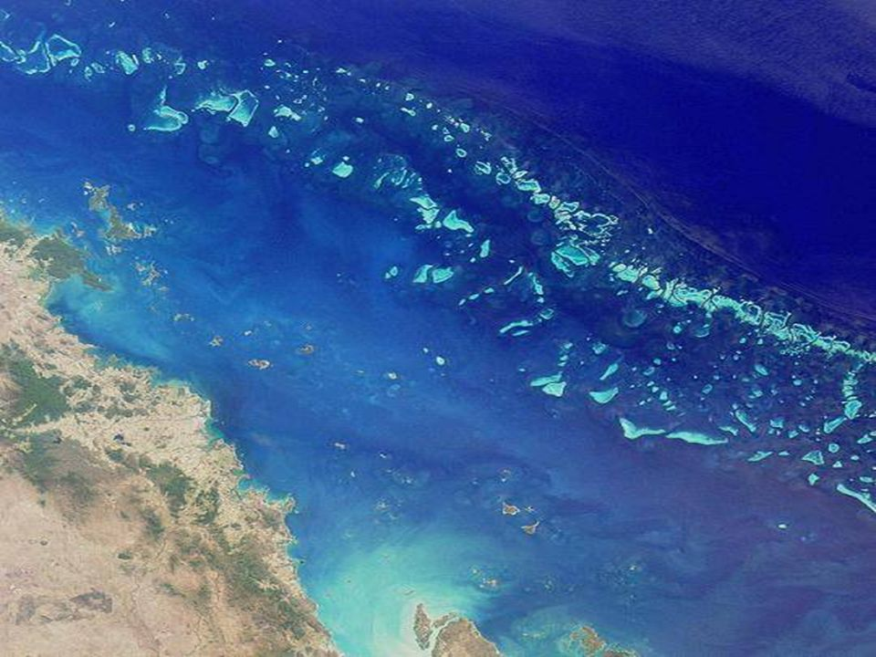 In Australia, al largo delle coste del Queensland, si snoda la più grande barriera corallina del mondo: 2900 barriere collegate tra loro, 900 isole, 3