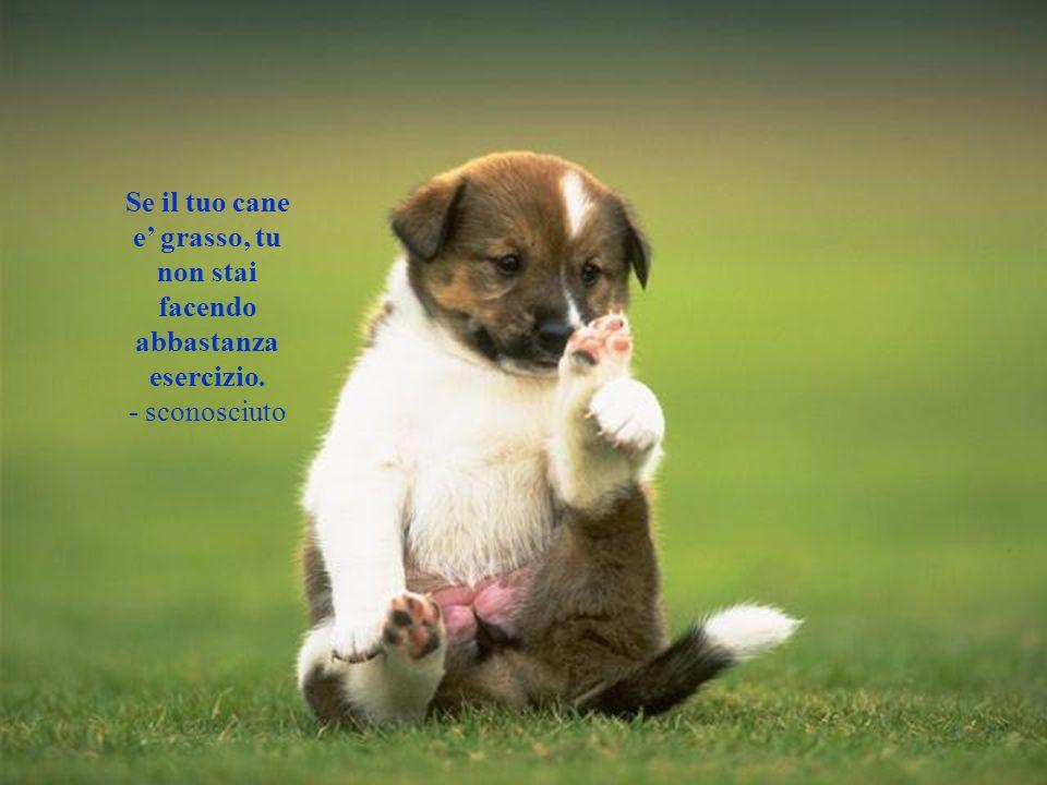 Il mio cane e preoccupato per leconomia perche una scatoletta di friskies costa 3. Questo significa 21 in moneta canina. - Joe Weinstein