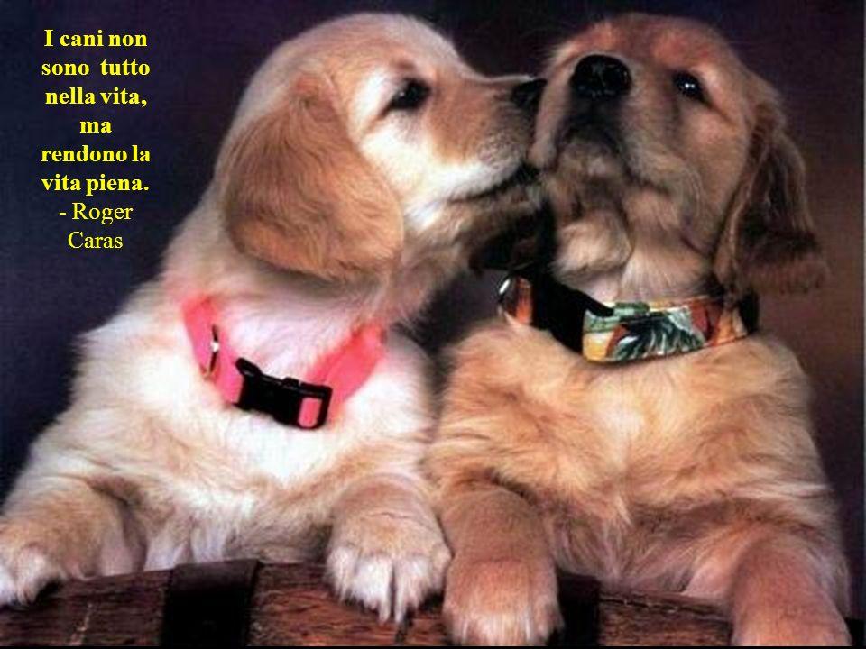 I cani amano i loro amici e mordono i nemici, a differenza delle persone, incapaci di amore puro e bisognose di mescolare odio e amore. - Sigmund Freu