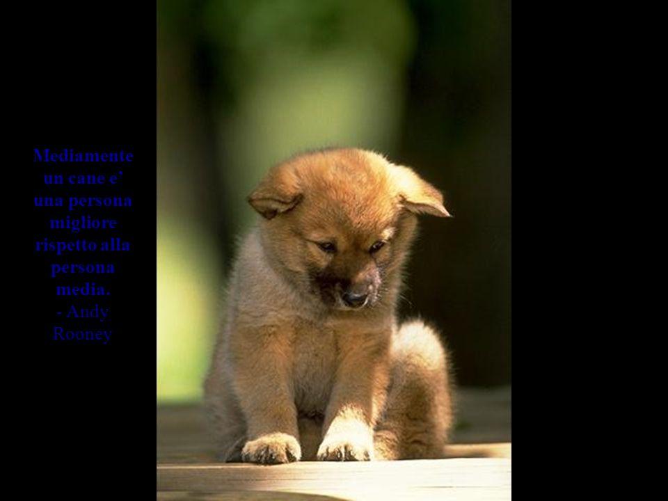 Se non ci sono cani in paradiso, quando muoio voglio andare dove sono andati loro. - Will Rogers