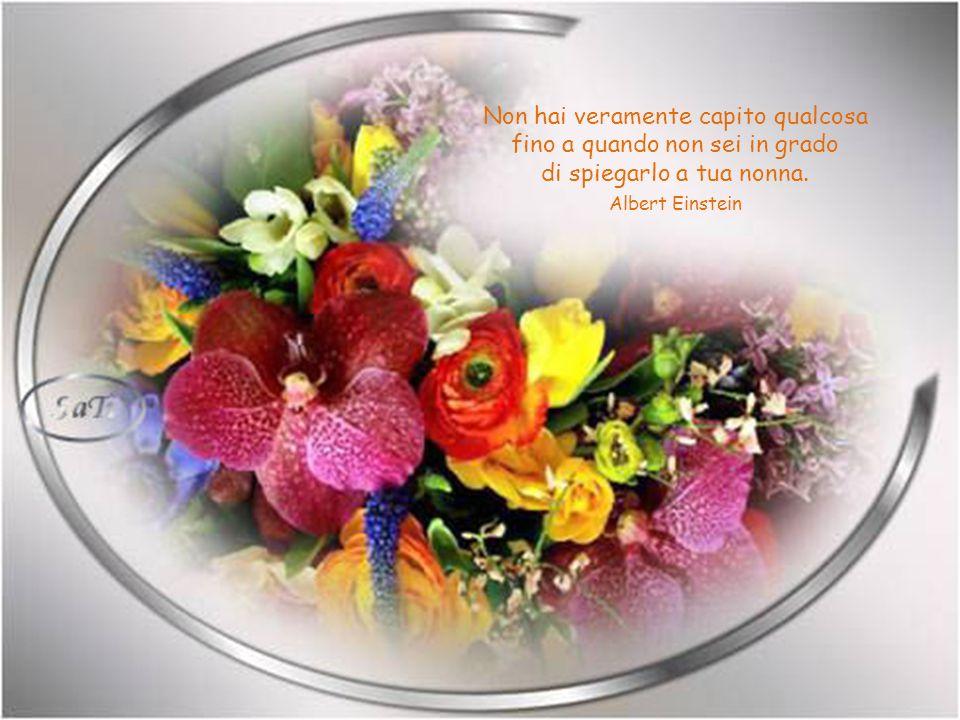 Nessuna medicina è in grado di guarire ciò che la felicità, non riesce a curare. Gabriel Garcia Marquez