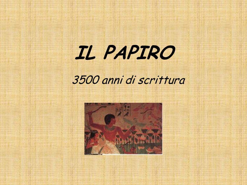 IL PAPIRO 3500 anni di scrittura