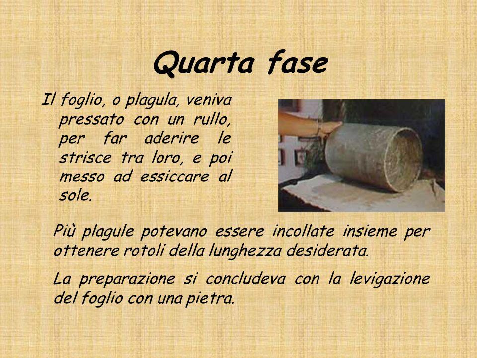 Quarta fase Il foglio, o plagula, veniva pressato con un rullo, per far aderire le strisce tra loro, e poi messo ad essiccare al sole. Più plagule pot