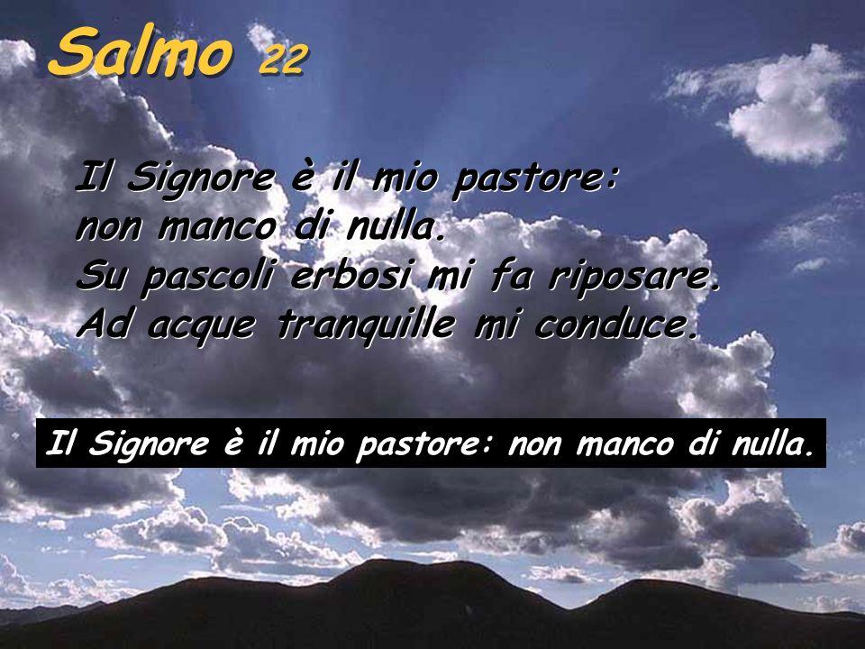 Ez 34,11-12,15-17 Così dice il Signore Dio: Ecco, io stesso cercherò le mie pecore e le passerò in rassegna. Come un pastore passa in rassegna il suo
