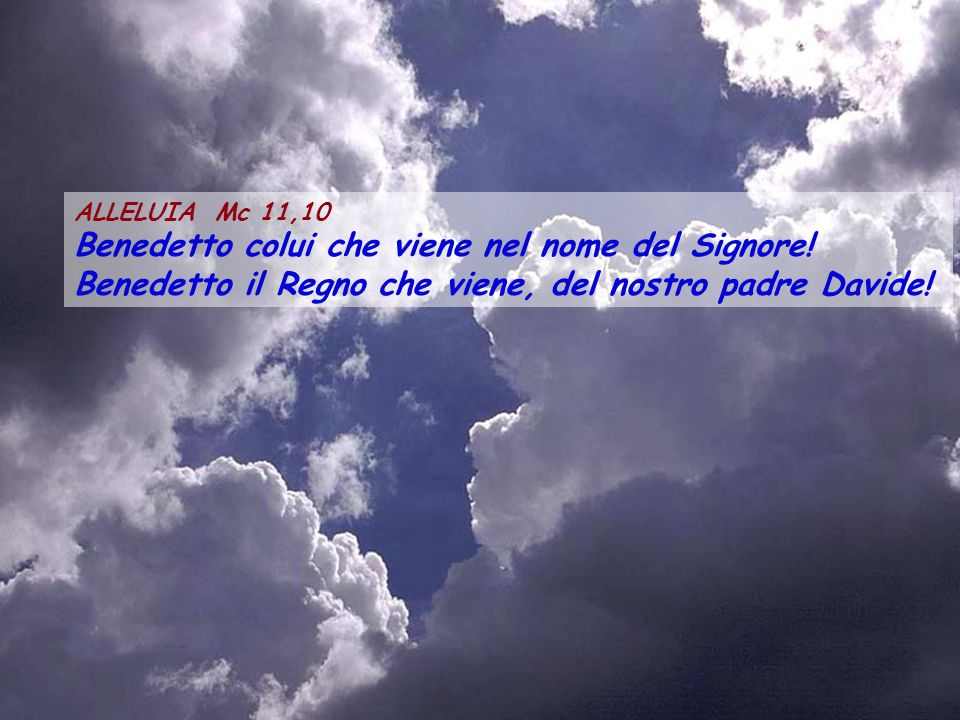 ALLELUIA Mc 11,10 Benedetto colui che viene nel nome del Signore.