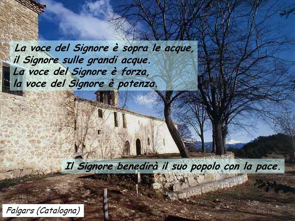 Santuario di Nuria (Catalogna) Salmo 28 Date al Signore, figli di Dio, date al Signore gloria e potenza. Date al Signore la gloria del suo nome, prost