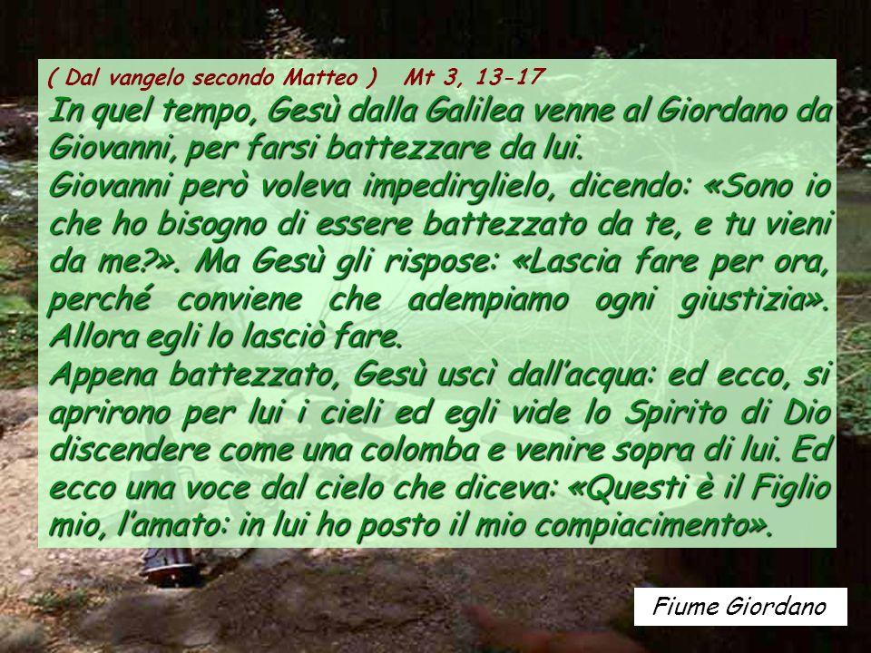Santa Maria de Gerri (Catalogna) ALLELUIA Mc 9, 7 Si aprirono i cieli e la voce del Padre disse: «Questi è il Figlio mio, lamato: ascoltatelo!».