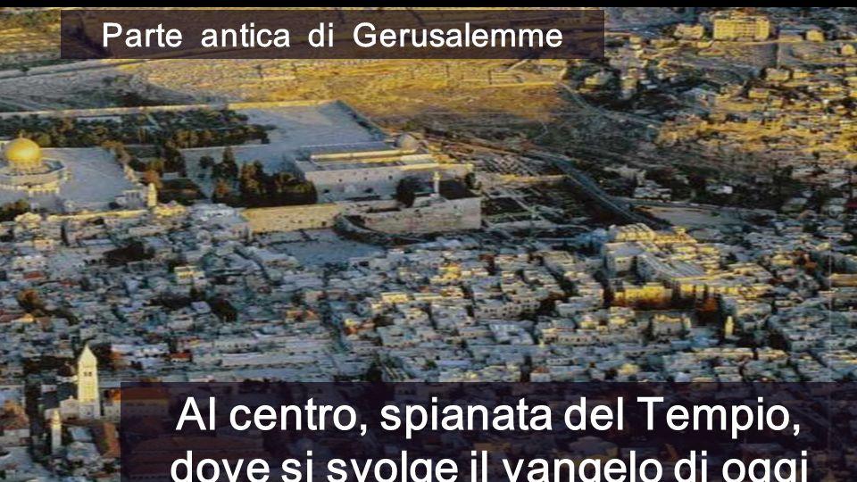 Parte antica di Gerusalemme Al centro, spianata del Tempio, dove si svolge il vangelo di oggi