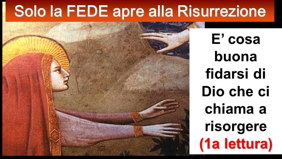 Dettaglio della spianata Lc 20, 27-38 Gli si avvicinarono poi alcuni sadducei, i quali negano che vi sia la risurrezione,