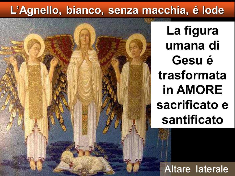 La figura umana di Gesu é trasformata in AMORE sacrificato e santificato LAgnello, bianco, senza macchia, é lode Altare laterale