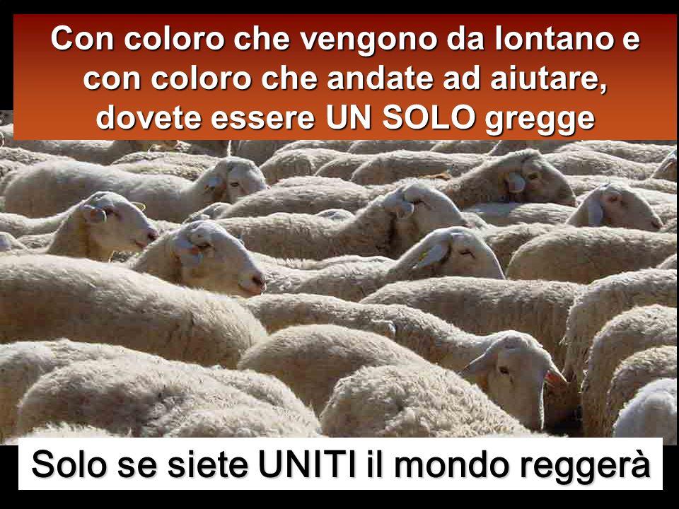 E ho altre pecore che non provengono da questo recinto: anche quelle io devo guidare.
