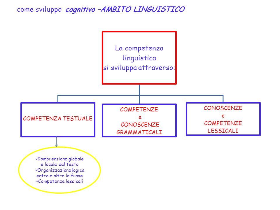 come sviluppo cognitivo –AMBITO LINGUISTICO La competenza linguistica si sviluppa attraverso: COMPETENZA TESTUALE COMPETENZE e CONOSCENZE GRAMMATICALI