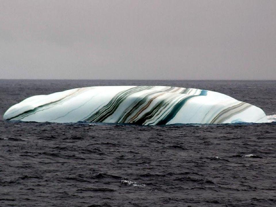 Quando un Iceberg si stacca dalla banchisa, uno strato di acqua di mare può ghiacciare sotto la superficie. Se lacqua contiene molte particelle di alg