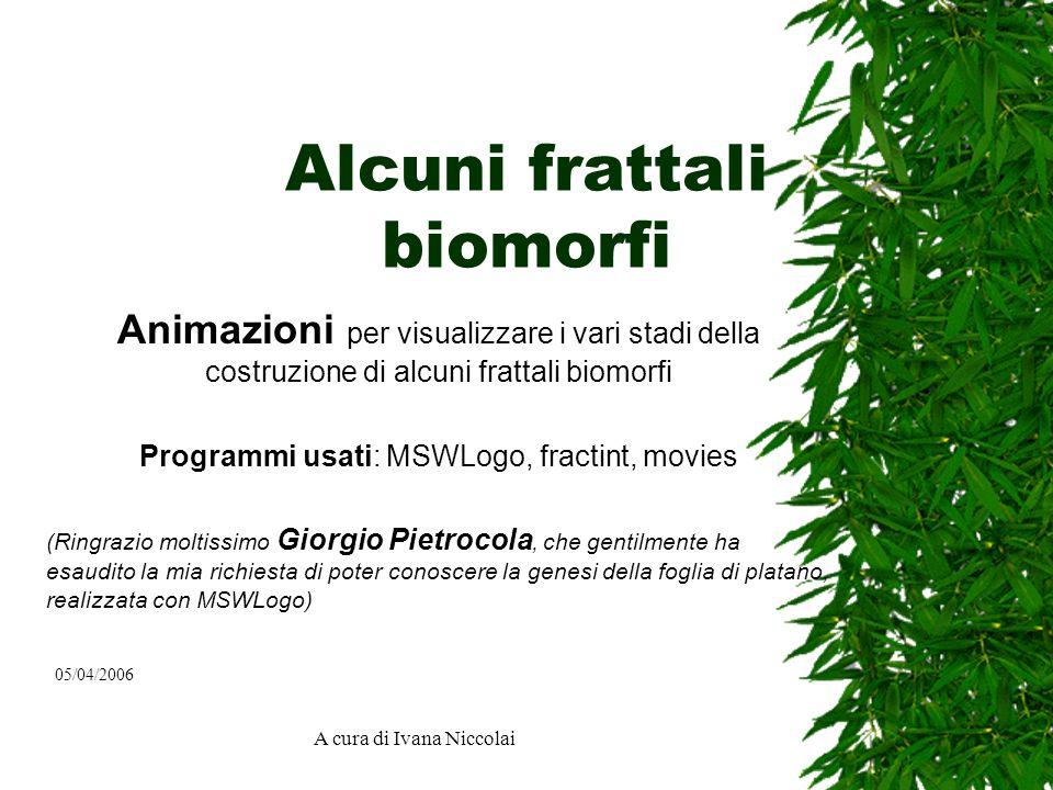 A cura di Ivana Niccolai Alcuni frattali biomorfi Animazioni per visualizzare i vari stadi della costruzione di alcuni frattali biomorfi Programmi usa