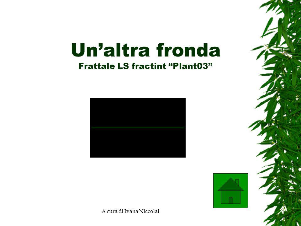 A cura di Ivana Niccolai Unaltra fronda Frattale LS fractint Plant03