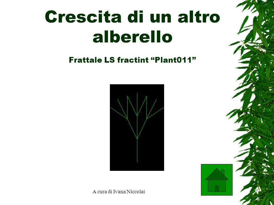 A cura di Ivana Niccolai Crescita di un altro alberello Frattale LS fractint Plant011