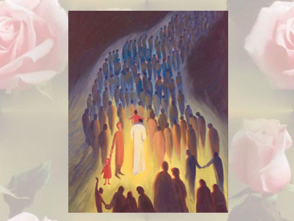Ma poi, nel mio sogno, vidi Gesù che avanzava.Era anche lui a piedi scalzi.
