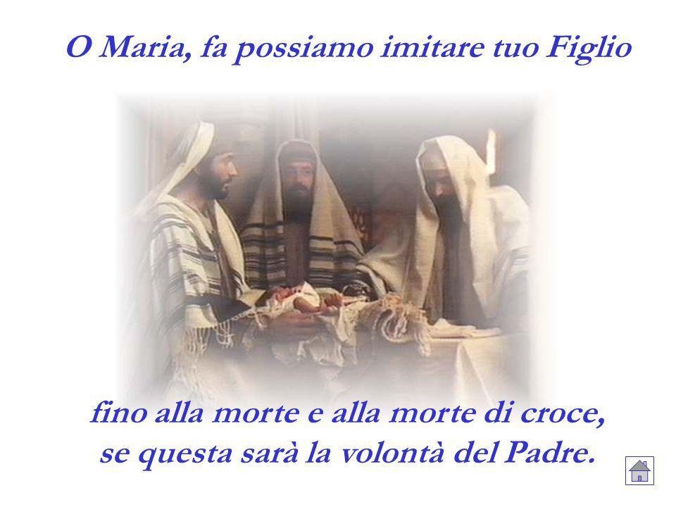 O Maria, fa possiamo imitare tuo Figlio fino alla morte e alla morte di croce, se questa sarà la volontà del Padre.