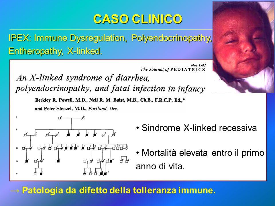 CASO CLINICO IPEX: Immune Dysregulation, Polyendocrinopathy, Entheropathy, X-linked. Sindrome X-linked recessiva Mortalità elevata entro il primo anno